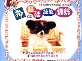 训狗视频教程:如何训练你的爱犬,名犬百科与训犬百法