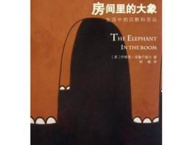 《房间里的大象:生活中的沉默和否认》PDF电子书