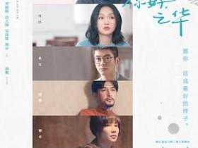 2018爱情片《你好,之华》迅雷下载