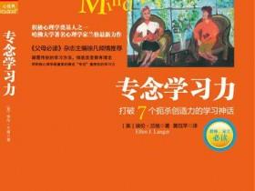 心理学书籍《专念学习力 打破7个扼杀创造力的学习神话》PDF电子书