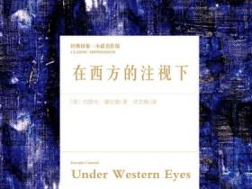 《在西方的注视下》epub+mobi+azw3电子书