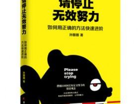 《请停止无效努力:如何用正确的方法快速进阶》epub电子书
