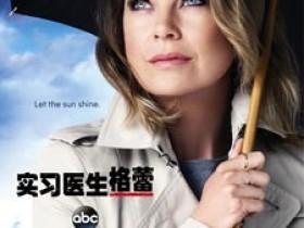 实习医生格蕾第十二季全集迅雷下载