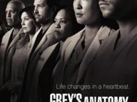 实习医生格蕾第七季全集迅雷下载