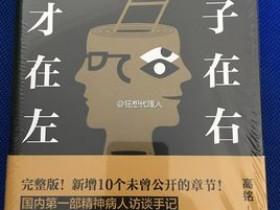 心理学书籍《天才在左疯子在右》epub电子书