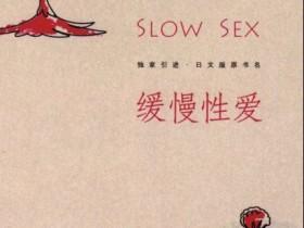 《完美伴侣:缓慢性爱》PDF电子书