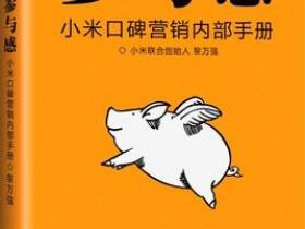 《参与感:小米口碑营销内部手册》PDF电子书