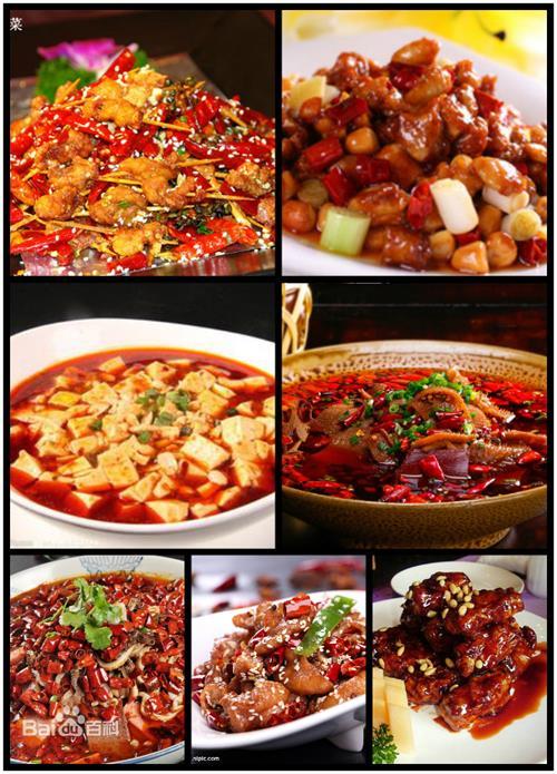 川菜家常菜的做法大全视频教程